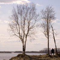 Одиночество :: Михаил Плецкий