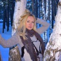 зима :: Василий Алехин