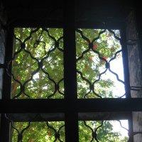 окно :: Наталья Зимирева