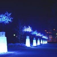 Новогодняя аллея :: Александр Шихин