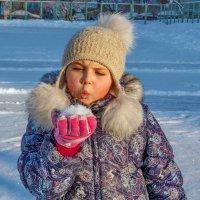 Мороз. Солнце. Пушистый снег. :: Анатолий. Chesnavik.