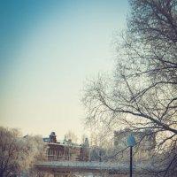 Зима :: Дарья Селянкина
