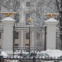 Сад дворца пионеров :: larisa Киселёва