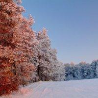 Морозно.. :: Юрий Анипов