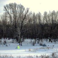 Зимняя рыбалка - развлечение для сильных духом!!! :: Elena Izotova