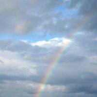 после дождя :: Влада Лаптева