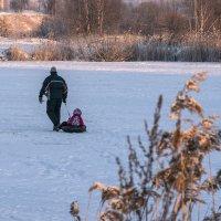 зимний день :: VL