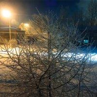 25.01.2016  -21с :: АЛЕКСЕЙ ФОТО МАСТЕРСКАЯ