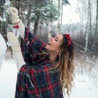 Зимний уют :: Александра Гущина