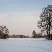 Зимний вечер :: Михаил Онипенко