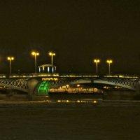 Благовещенский мост ночью :: Елена