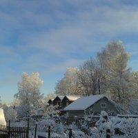 Зима в деревне :: Ольга Романова