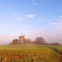 розовый туман :: Нина