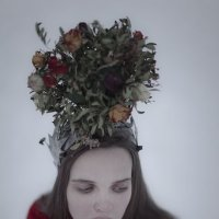 Red Queen :: DewFrame Илья Ягодинский