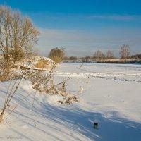 Мороз и солнце на Дубне. :: Виктор Евстратов