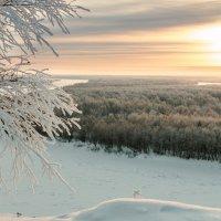 Морозное... :: Светлана