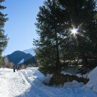 Горы, солнце, снег! :: Алексей Большаков