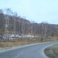 Дорога на Байкал :: alemigun