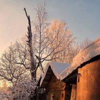 Вечерний свет :: Валерий Талашов