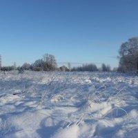 Просто зимний пейзаж :: Mariya laimite