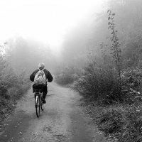 В утренний туман :: Николай Белавин