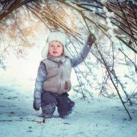 Зимнее утро :: Екатерина Савёлова