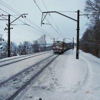 Экскурсия в Гадюкино зимой (3) :: Александр Резуненко