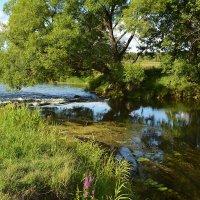 Река,река,реченька.. :: Алла Кочергина