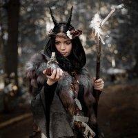 Лесная ведунья :: Irina Voinkova