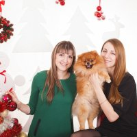 Новогодние фотосессии :: Валентина Батурина
