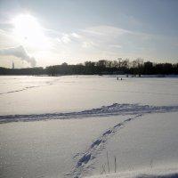 Следы на снегу :: Виктор Сергеевич Конышев