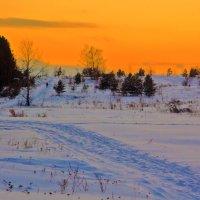 Вечерняя лыжня :: Анатолий Иргл