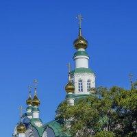 Купола Никольского храма в Армавире :: Игорь Сикорский