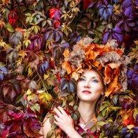 Яркие краски осени :: Наталья Верхотурова