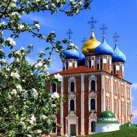 Рязань.Успенский собор Рязанского Кремля. :: Лесо-Вед (Баранов)