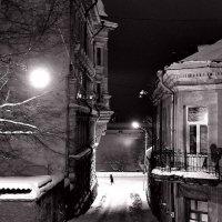 Ночь,улица,фонарь :: Владислав Филипенко