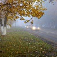 Туман,туман.... :: victor Lion