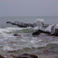Маленькие волны на Балтийском море. :: Максим Воробьев