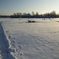 Снежное покрывало :: Aнна Зарубина