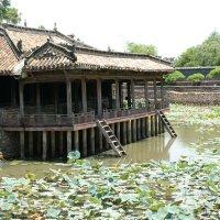 Вьетнам :: Антонина