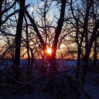 Закат зимнего дня :: Igor Arabadzhy