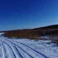 Просто зимний день :: Igor Arabadzhy