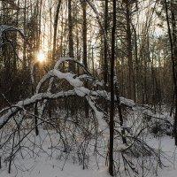 Заходило солнце :: Евгений Ярдов