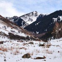 Холодные горы :: Сергей Рычков