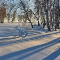 Утро. :: Николай Мальцев