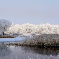 Пейзаж с рекой. :: Евгений Кузнецов