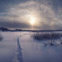Зимняя радуга :: Марина Никифорова