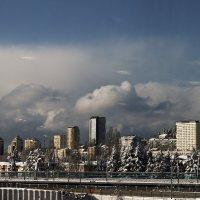 Зима в Сочи.. :: Александр Бессараб