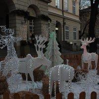 Дух Рождества-21. :: Руслан Грицунь