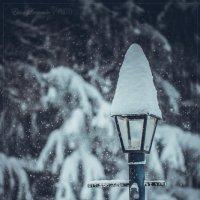 Постовой Ее Величества Зимы. :: Елена Леневенко